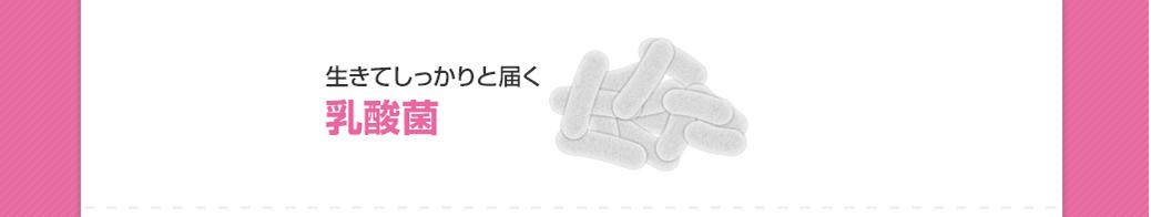 生きてしっかりと届く 乳酸菌