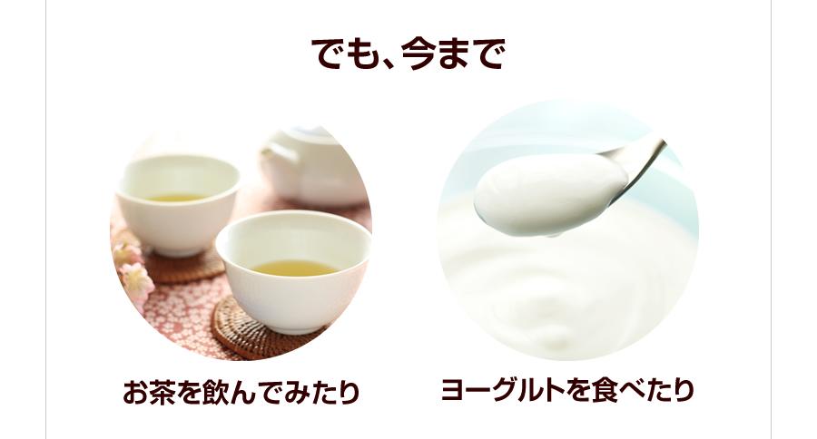 お茶を飲んでみたり ヨーグルトを食べたり