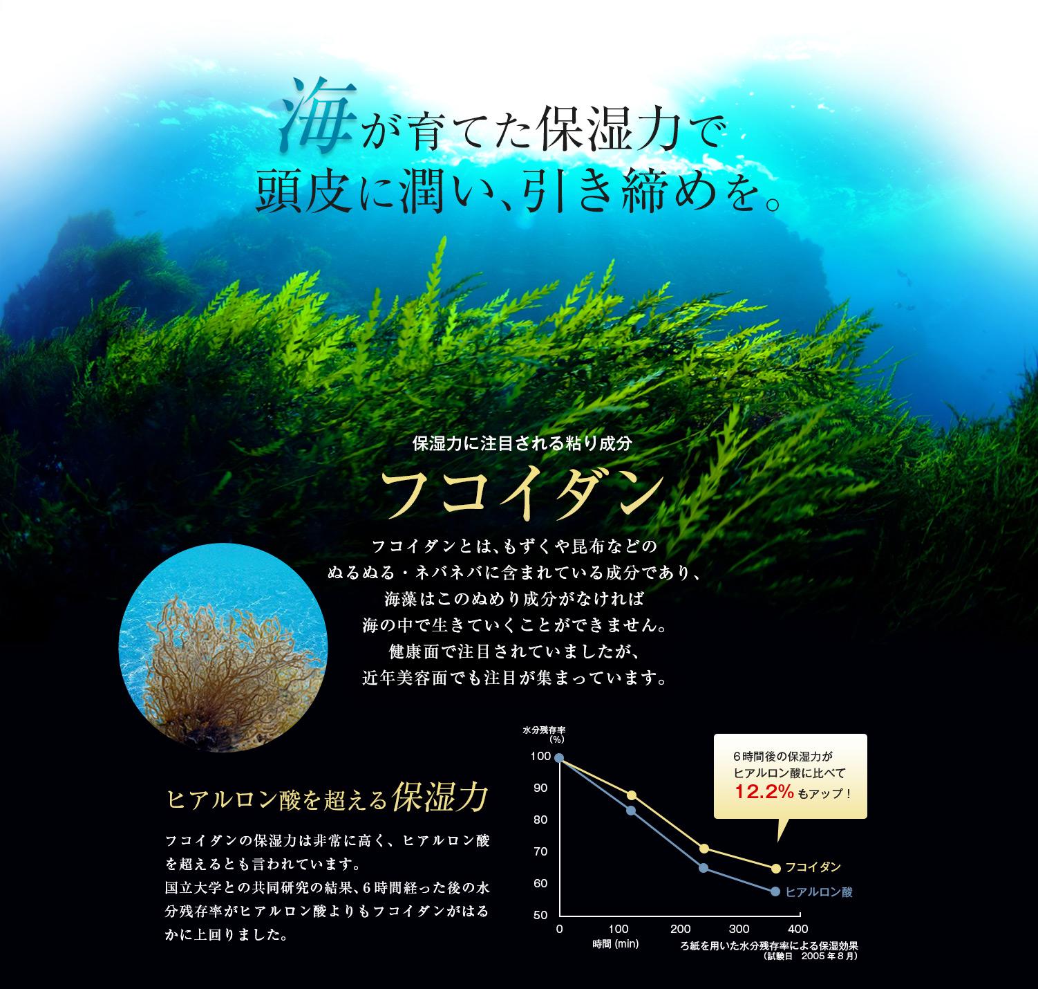 海が育てた保湿力