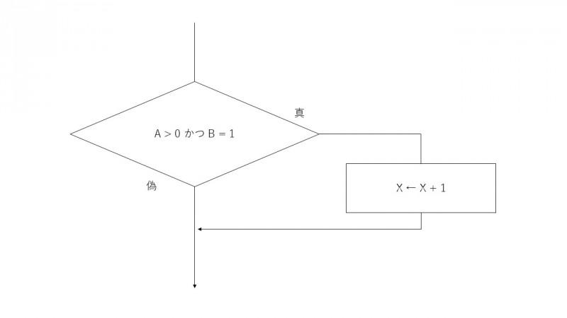 基本情報_図1