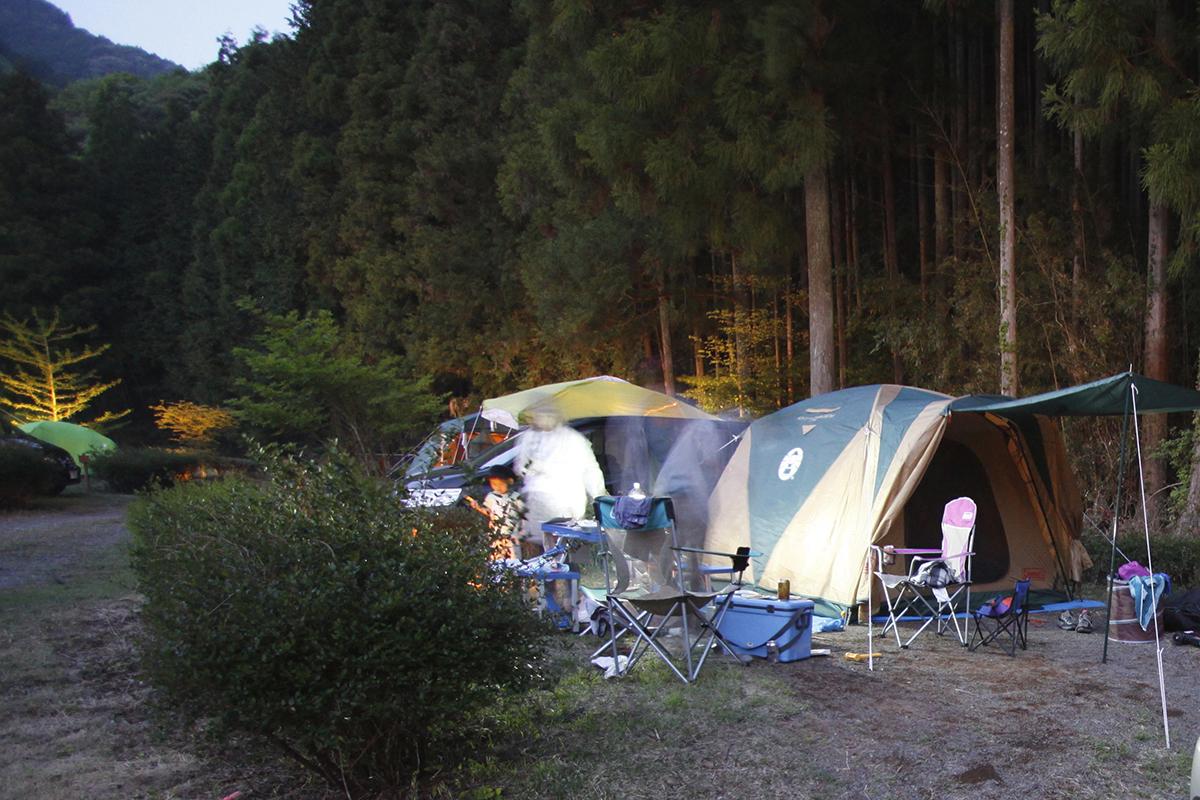 楽しさの裏にある危険! 「やけど・害虫・転落」などキャンプブームのいまこそ知っておくべきリスク管理の方法