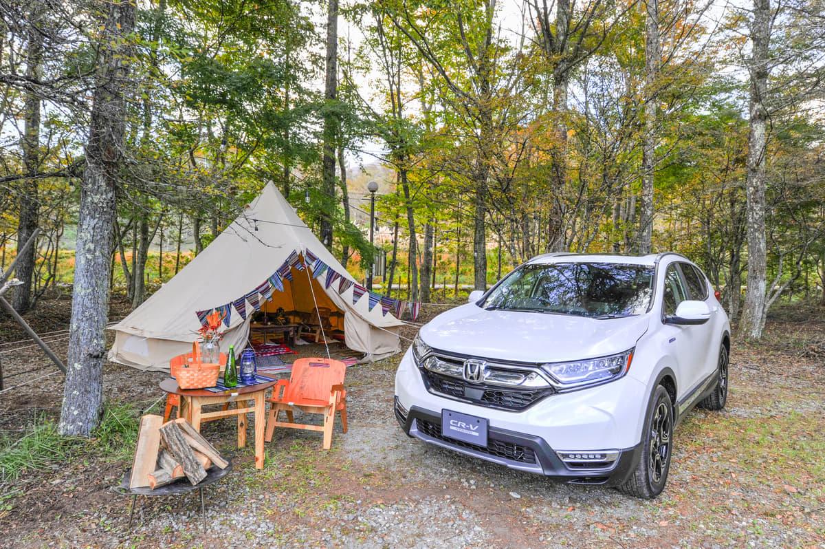 ランクルやジムニーよりも「HV&PHV車」! キャンプでは「ワイルドさ」より電気の「便利さ」が圧勝だった