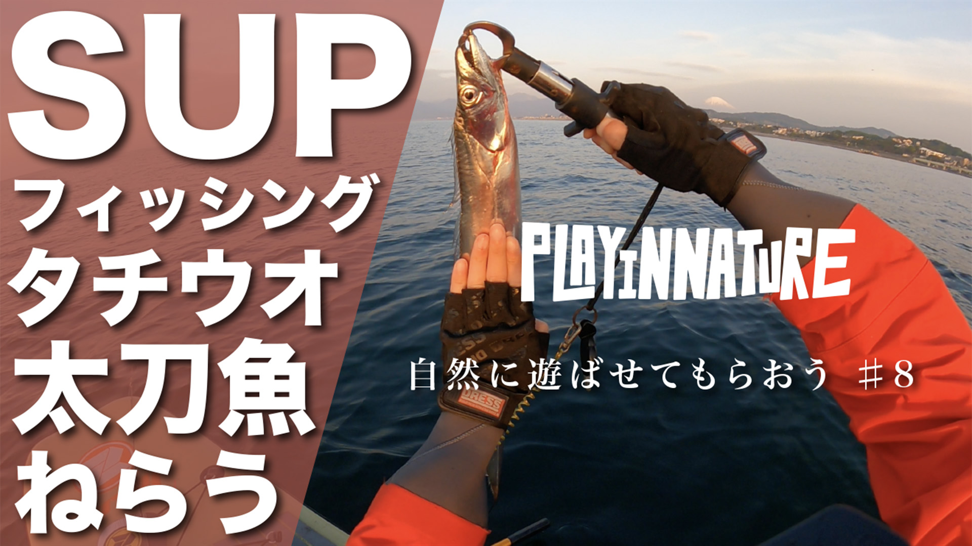 SUPフィッシングでタチウオ&中深海ジギングしたら最高の丼ができた