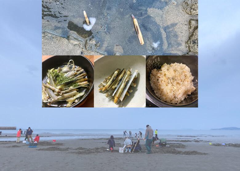キモ可愛いマテ貝採り ザっとその方法と魅力を紹介!