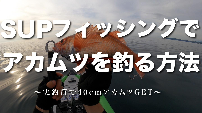 SUPフィッシングでアカムツを釣る方法を考えていたら記録級の特大アカムツGET!