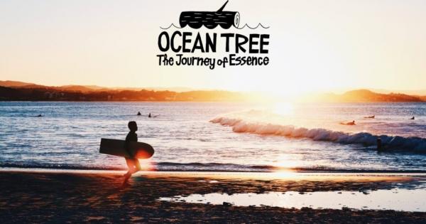 京都の山を舞台にした「歴史上初の木製サーフボード作り」のドキュメンタリー映画化が決定!OCEANTREEプロジェクトの期待の新作