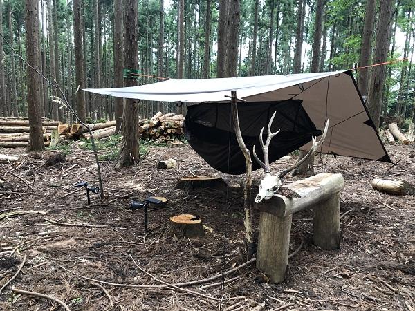 食うか食われるか、野生動物で一番怖いのは【17#自分のキャンプ場を作る夫婦の話】
