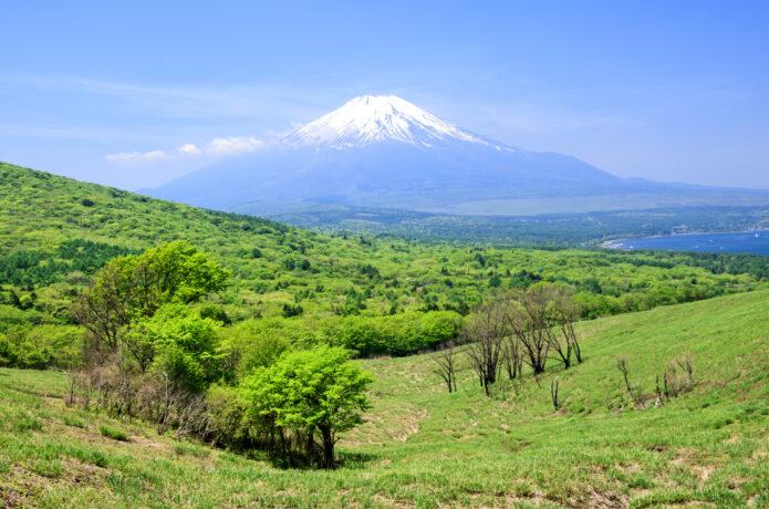 山中湖ハイキング|富士山が目前に迫るナイス眺望!初心者も楽しめる湖畔の山歩きへ