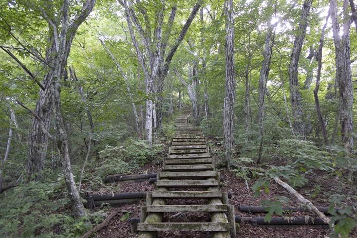 【ドМさん必見】トレーニングに最適!? 全国の階段の多い山厳選9座