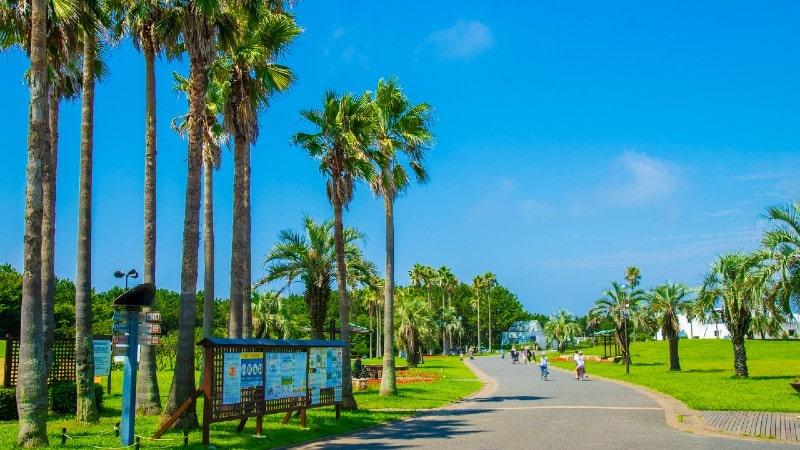 手軽に自然を楽しめる!神奈川県の癒やしスポット15選