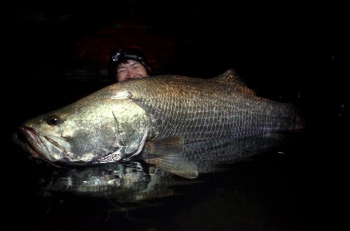"""""""幻のアカメ""""は釣ってもいいの?!日本三大怪魚アカメの基礎的な生態、キャッチ&リリースについて怪魚ハンター山根が解説"""