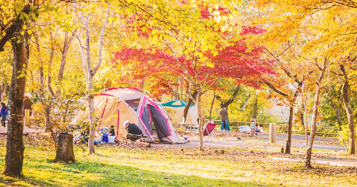 秋キャンプが最高な5つの理由とおすすめキャンプ場7選