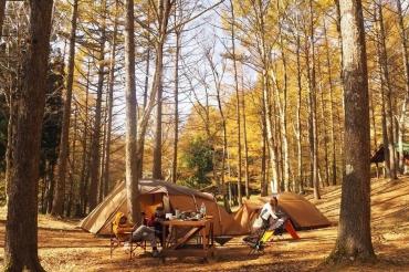 【1日休めば4連休!】11月20・21・22日に泊まれるキャンプ場〜関西〜
