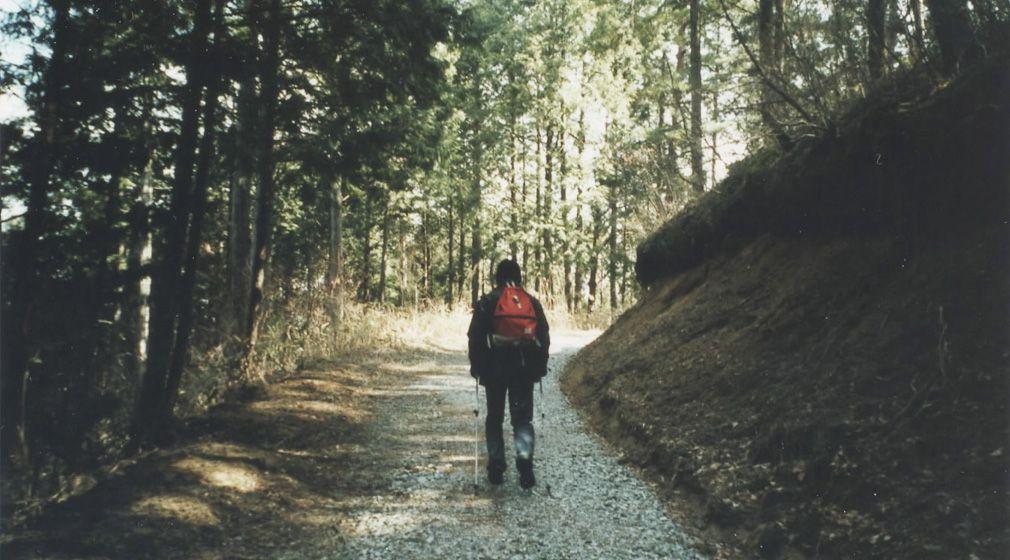 わたしの初やま|#02 雨の尾瀬・父と登った里山での「街にいたら感じられなかったこと」