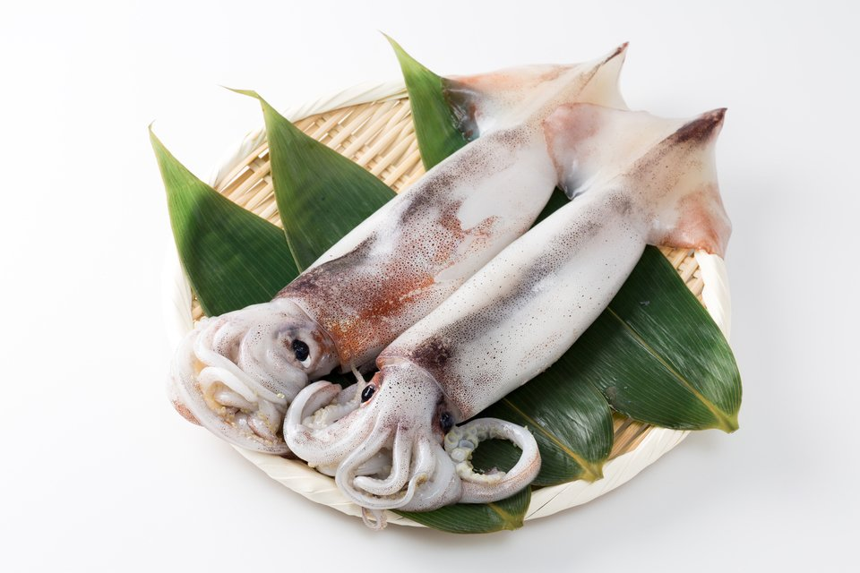 スルメイカの美味しい食べ方とは!?捨てるところほぼ無し!簡単な捌き方から美味しい肝料理、子供が喜ぶレシピまでご紹介します!