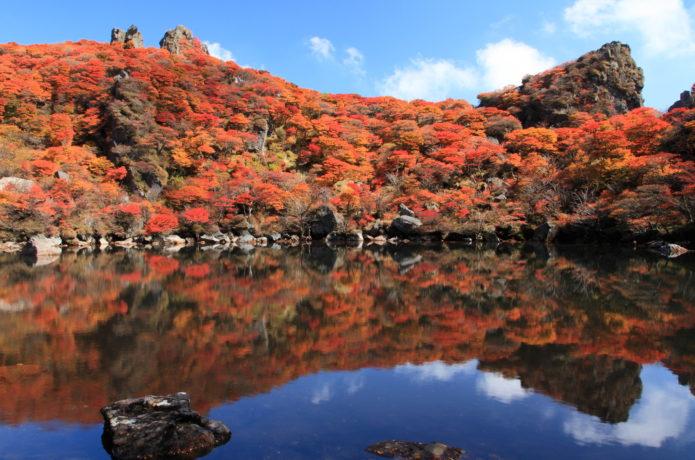 山肌を真っ赤に染める大船山の紅葉!おすすめ登山コース・アクセス情報を紹介