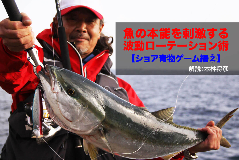 魚の本能を刺激する波動ローテーション術【ショア青物ゲーム編 PART2】