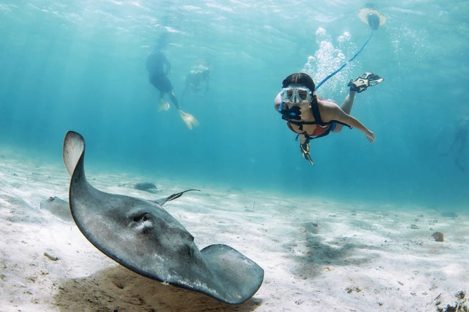 3mまで潜航可能!一歩先の世界が楽しめる浮上式シュノーケル「NEMO」
