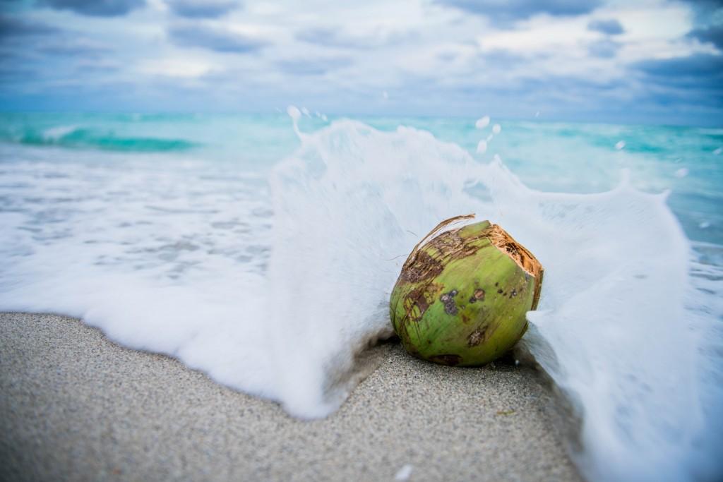水分補給、ダイエット、スキンケア! 女性ランナーに嬉しいココナッツ