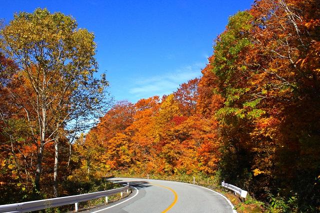 山形県で紅葉を楽しむならココ! ダイナミックな紅葉狩りを楽しめる3スポット