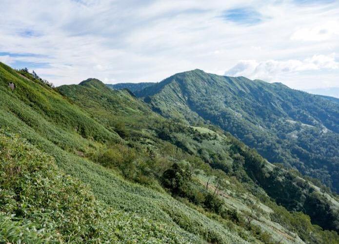 白砂山|どこまでも続く稜線を歩く!日帰り登山コースとアクセス情報