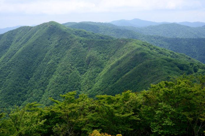 伯母子岳|奥高野の隠れた名山。歴史を感じながら絶景を堪能