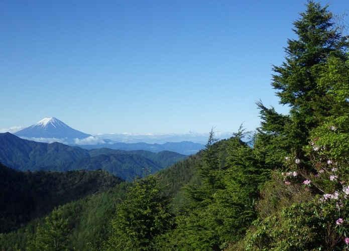 和名倉山|奥秩父の山奥へ分け入る、富士山も望める登山コース【上級】