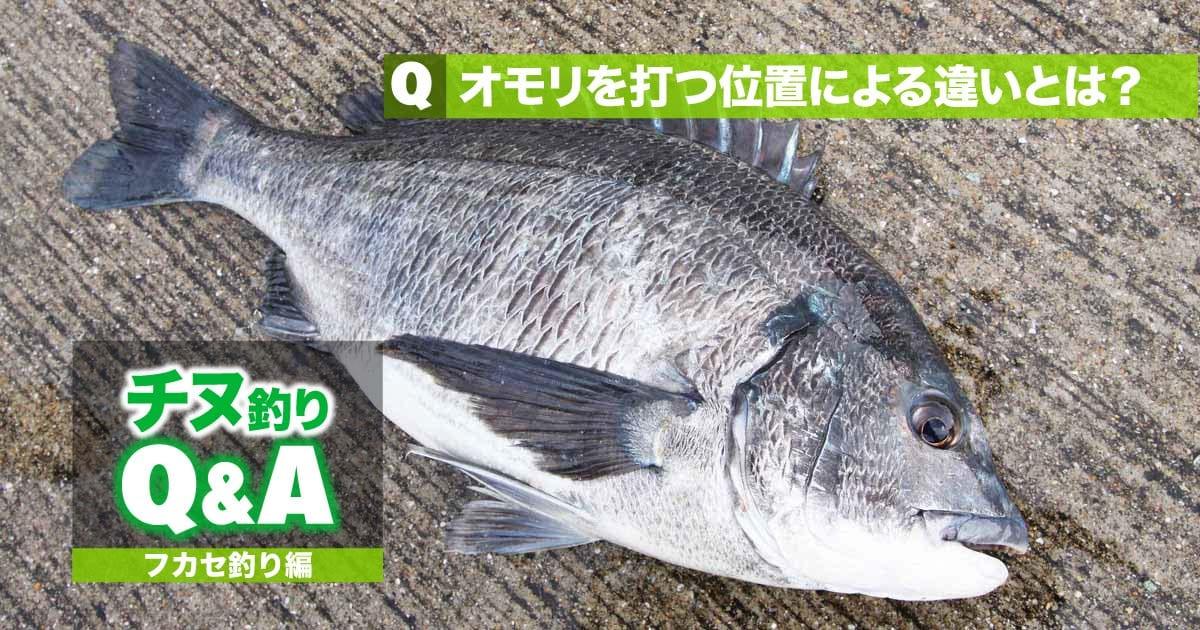 【チヌ・フカセ釣りの悩みズバリ解消!!】オモリを打つ位置による違いとは?