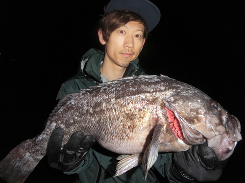 極寒の地、北海道でスポーニング前の大物クロソイを狙おう!小さなバイトこそ大物サイン!?シーズンイン前に押さえるべき釣りポイントと必須アイテムをご紹介します!