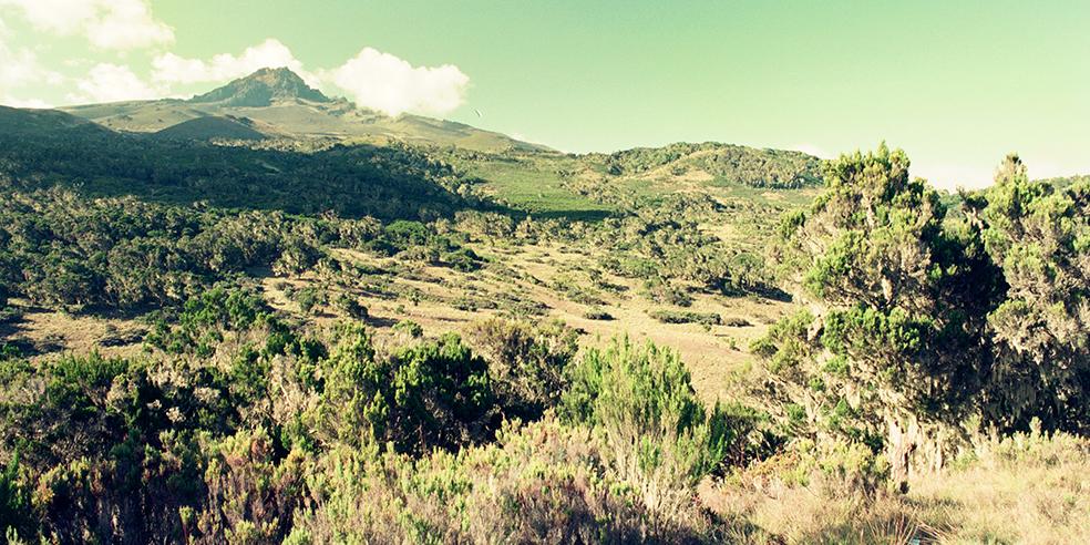 アフリカ大陸最高峰・キリマンジャロ峰(5,895m)登山 vol.5【アンバサダー 村山 孝一】
