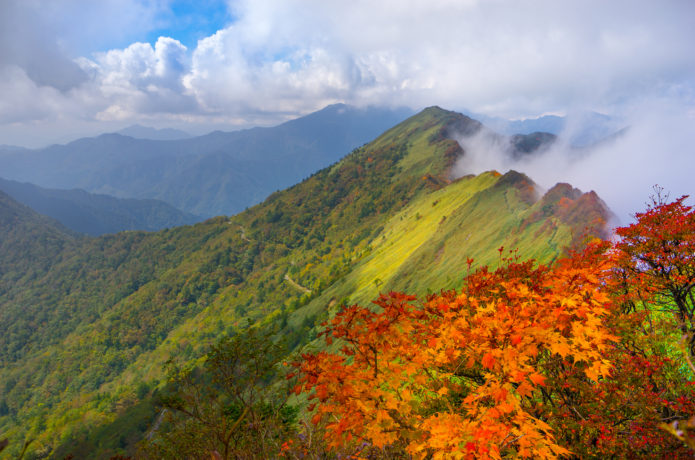 ドライブも楽しめる四国の絶景スポット!瓶ヶ森のコースと見どころ情報