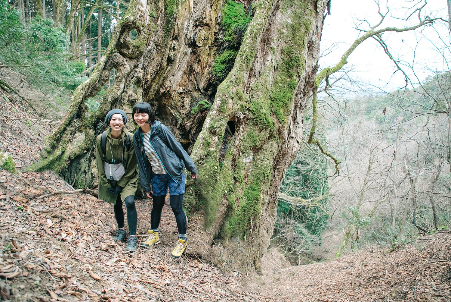 女子の身も心も満たしてくれる「京都デトックス山旅」〜【森の京都】綾部トレイルに行ってきた〜