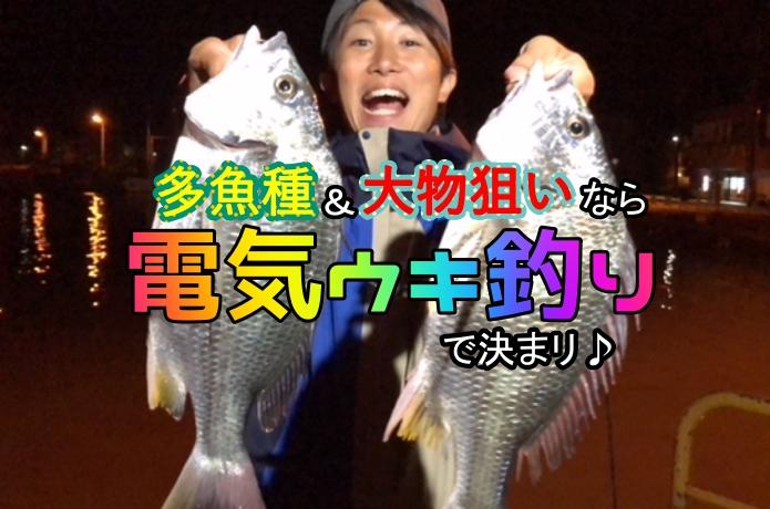 """手持ちの道具で""""多魚種&大物狙い""""!夜釣りをするなら電気ウキが絶対オススメ"""