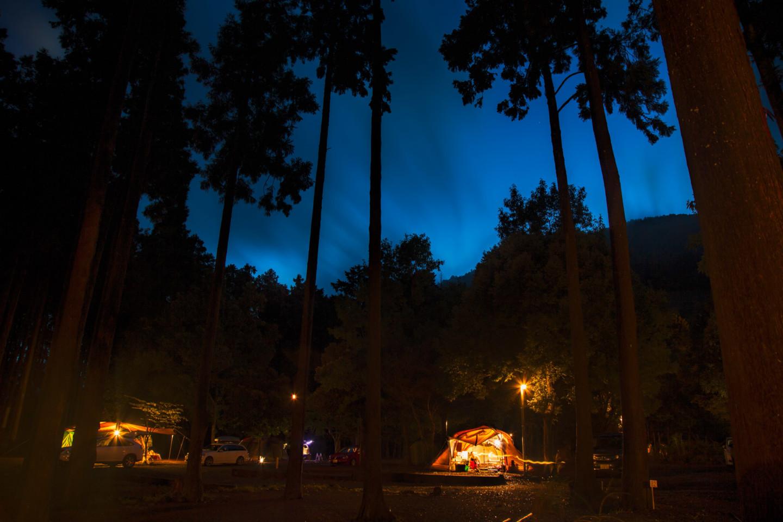 伊豆の海も山も堪能できる、一挙両得な林間キャンプ場「河津オートキャンプ場」。【お風呂に入れるキャンプ場FILE #5】