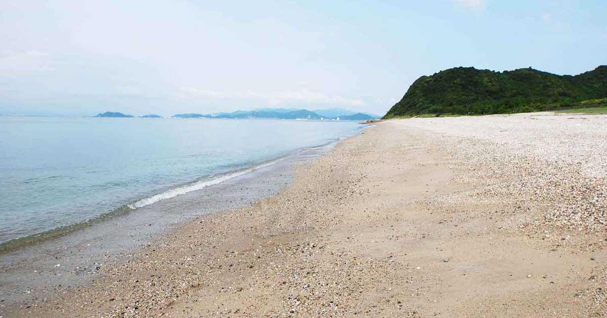 フィールドガイド 吹上浜