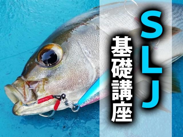 SLJ・スーパーライトジギングの基本と魅力