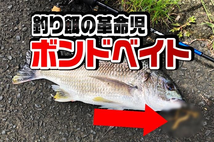 【釣りエサ革命か】ボンドベイトの実釣力が半端ない!虫エサが苦手な人にもオススメです