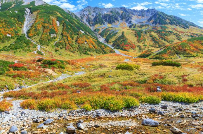 紅葉の絨毯はまさに絶景!立山の紅葉見ごろ情報と厳選スポット4選