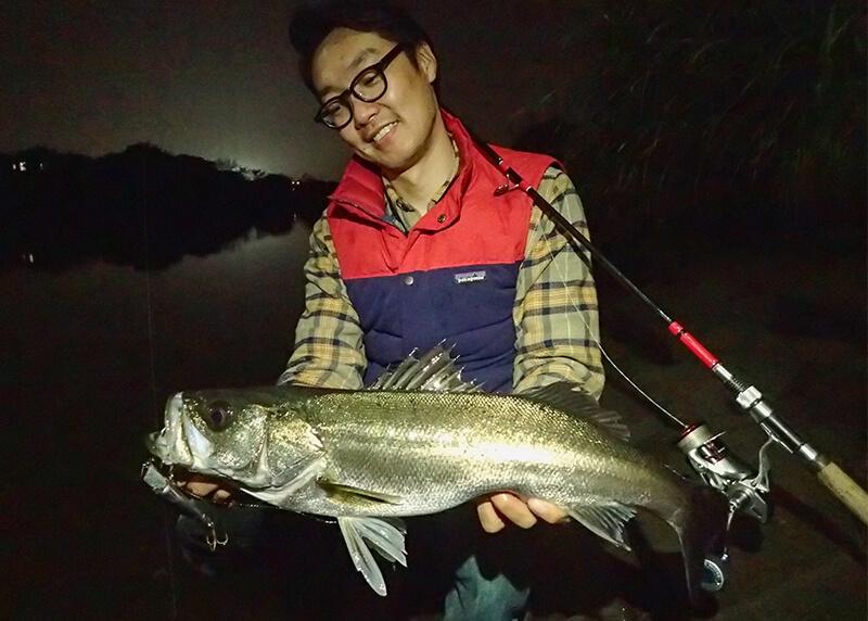 サラリーマン必見??都市型の釣り=アーバンフィッシングのススメNo.9 リベンジなるか?日本を代表するアーバンなターゲット、シーバスを釣る!