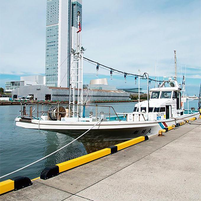魁明丸(新潟西港)の釣果情報
