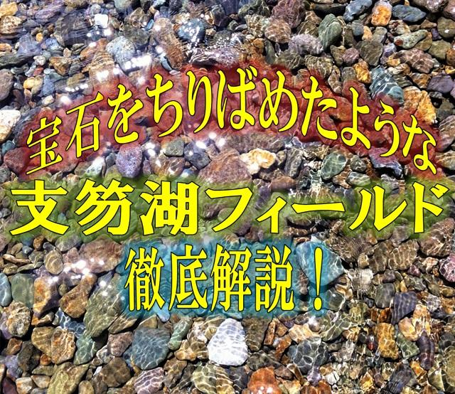 【ポイント紹介】支笏湖フィールド徹底解説!