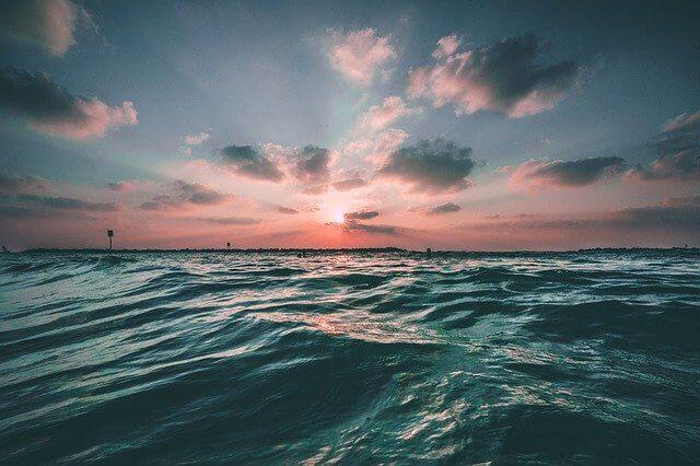 アライア(木のサーフボード)サーフィンの魅力とは?ロブマチャド のライディング映像も