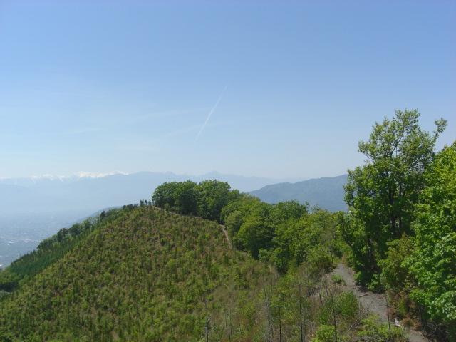 甲州高尾山|ワイナリーと天空の尾根を歩く!日帰り登山コース・温泉まとめ