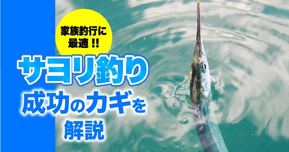 家族釣行に最適!! サヨリ釣り成功のカギを解説