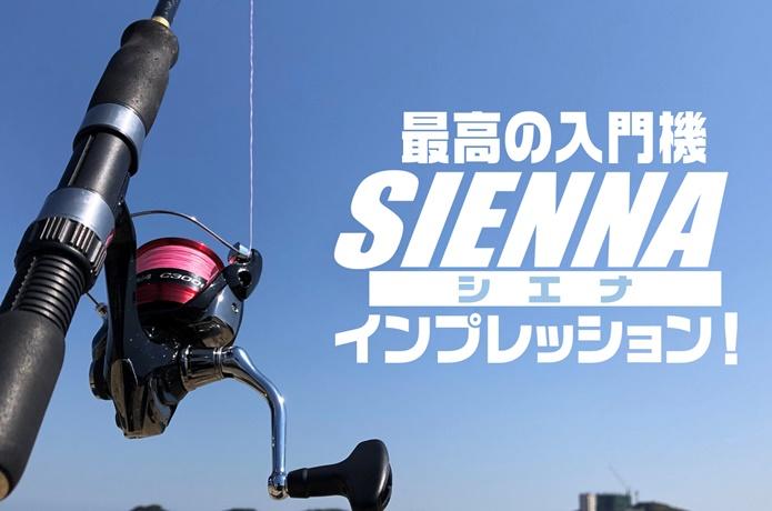 シマノ「19シエナ」の実釣インプレ!本当に3,000円前後のリールですか!?