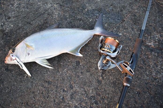 5人の釣りキチたちのライトショアジギングタックルを大公開!ロッド&リールはコレが良い