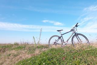 【クロスバイク】ブルホーン化やスタンドの装備など初心者でも簡単で人気のカスタマイズをご紹介!