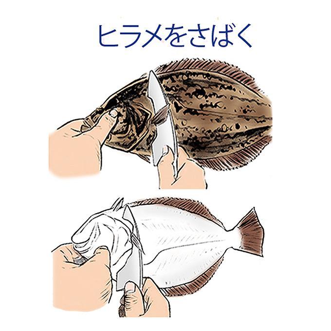 保存版!!釣り人のための 魚のさばき方!ヒラメをさばく