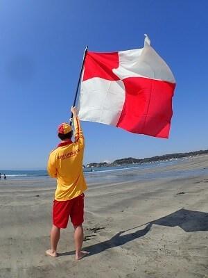 サーフィン中に『赤白の旗』を見たら速やかに避難!津波フラッグのデザイン統一へ
