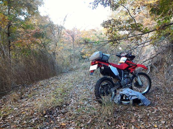 【連載】バイクは初心者でも楽しい趣味!知識や練習は必要?